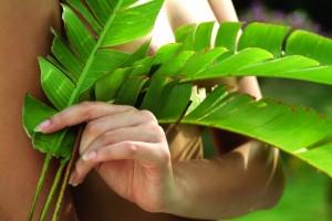 Базові рослинні олії