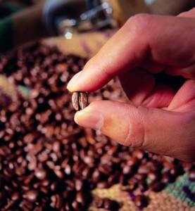 Секрети кави